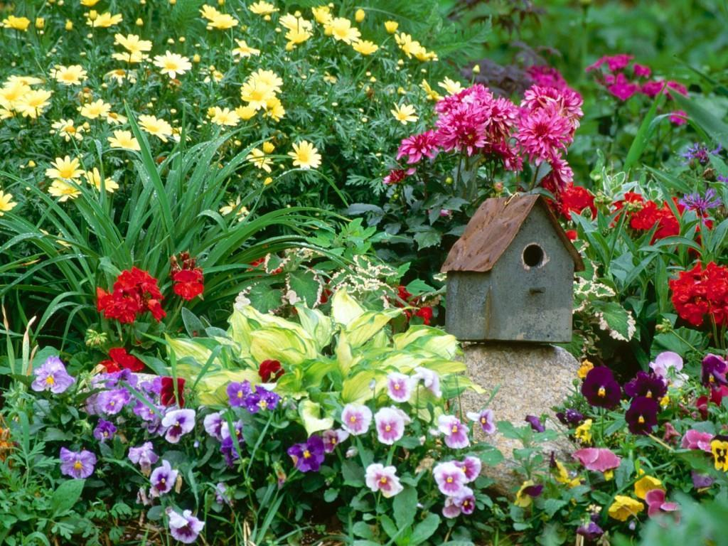 BIRD HOUSE GARDEN WALLPAPER   22986   HD Wallpapers   [desktopinHQ 1024x768
