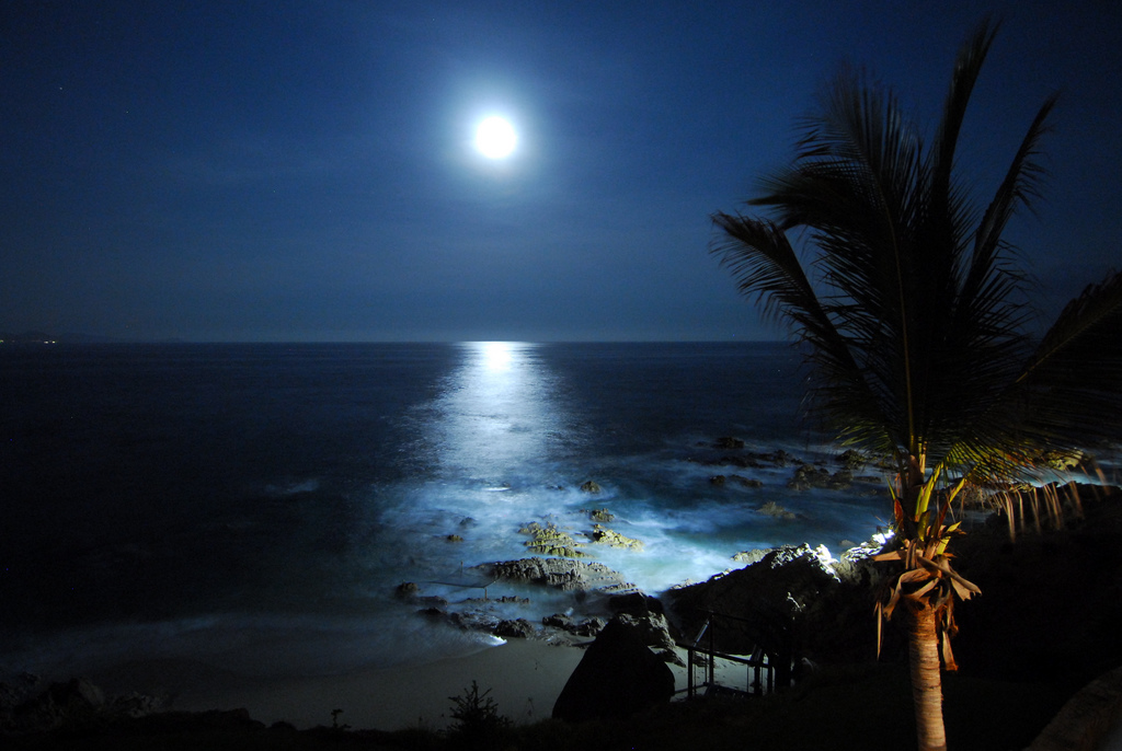 Beach Moon Wallpaper - WallpaperSafari