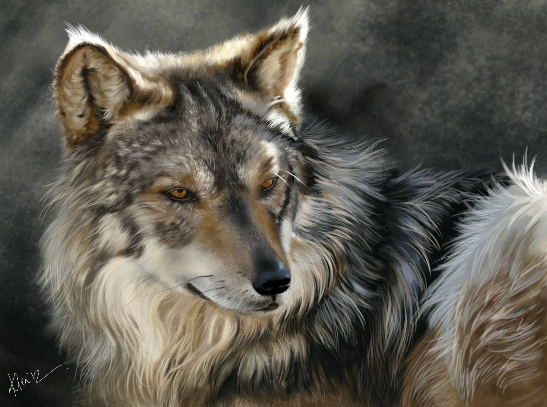 Wolves Painting Art Glance Animals wolf wallpaper 1920x1428 70887 1920x1428