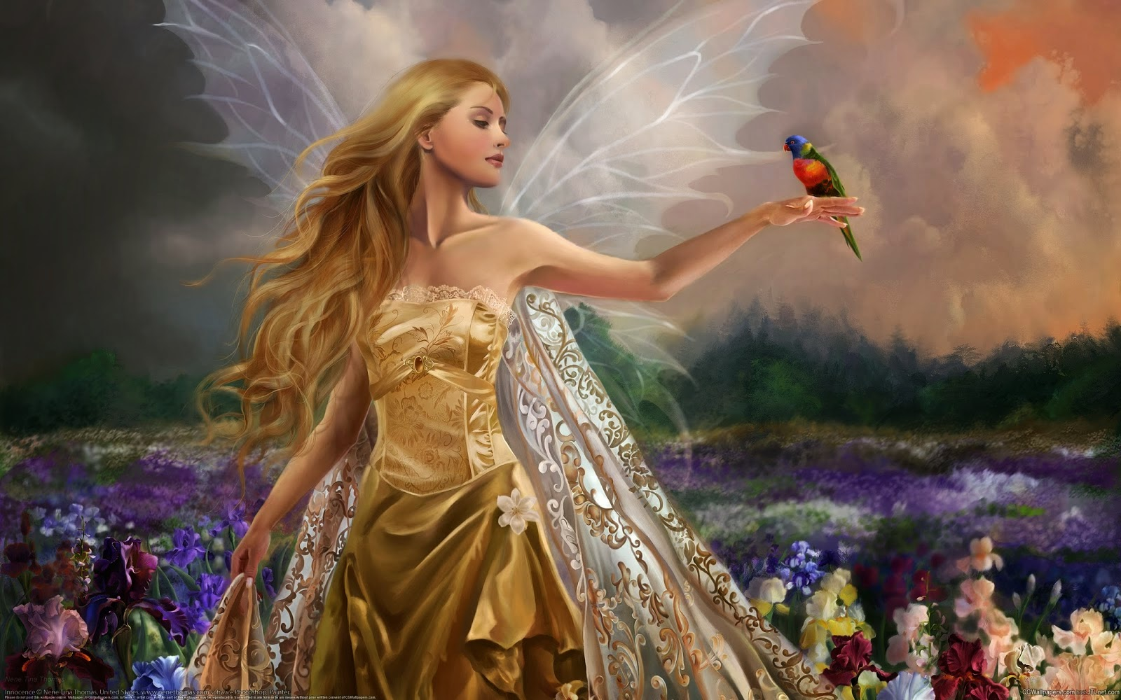 Beautiful Angel HD Wallpapers   Image Wallpapers 1600x1000
