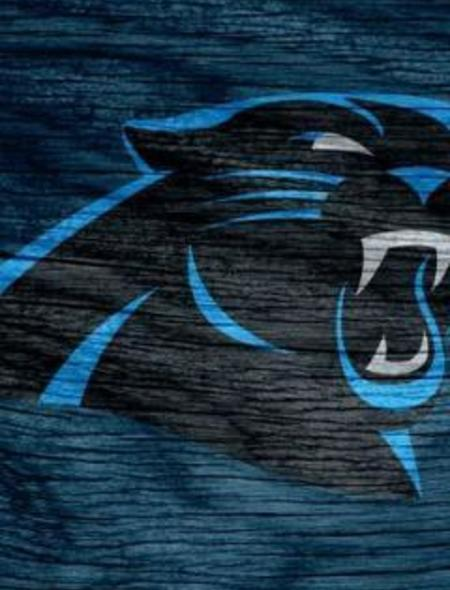 Carolina Panthers Blue Weathered Wood Wallpaper for iPhone 5 450x590