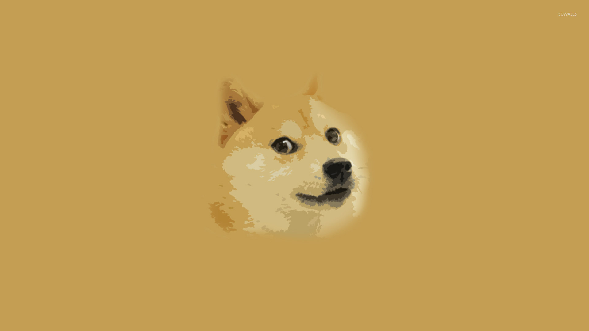 Doge wallpaper 1920x1080 1920x1080