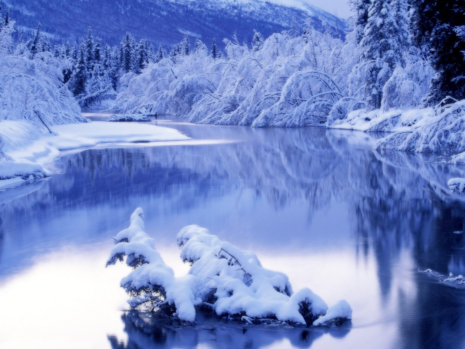 winter nature wallpaper desktop   Desktop Wallpaper 1600x1200