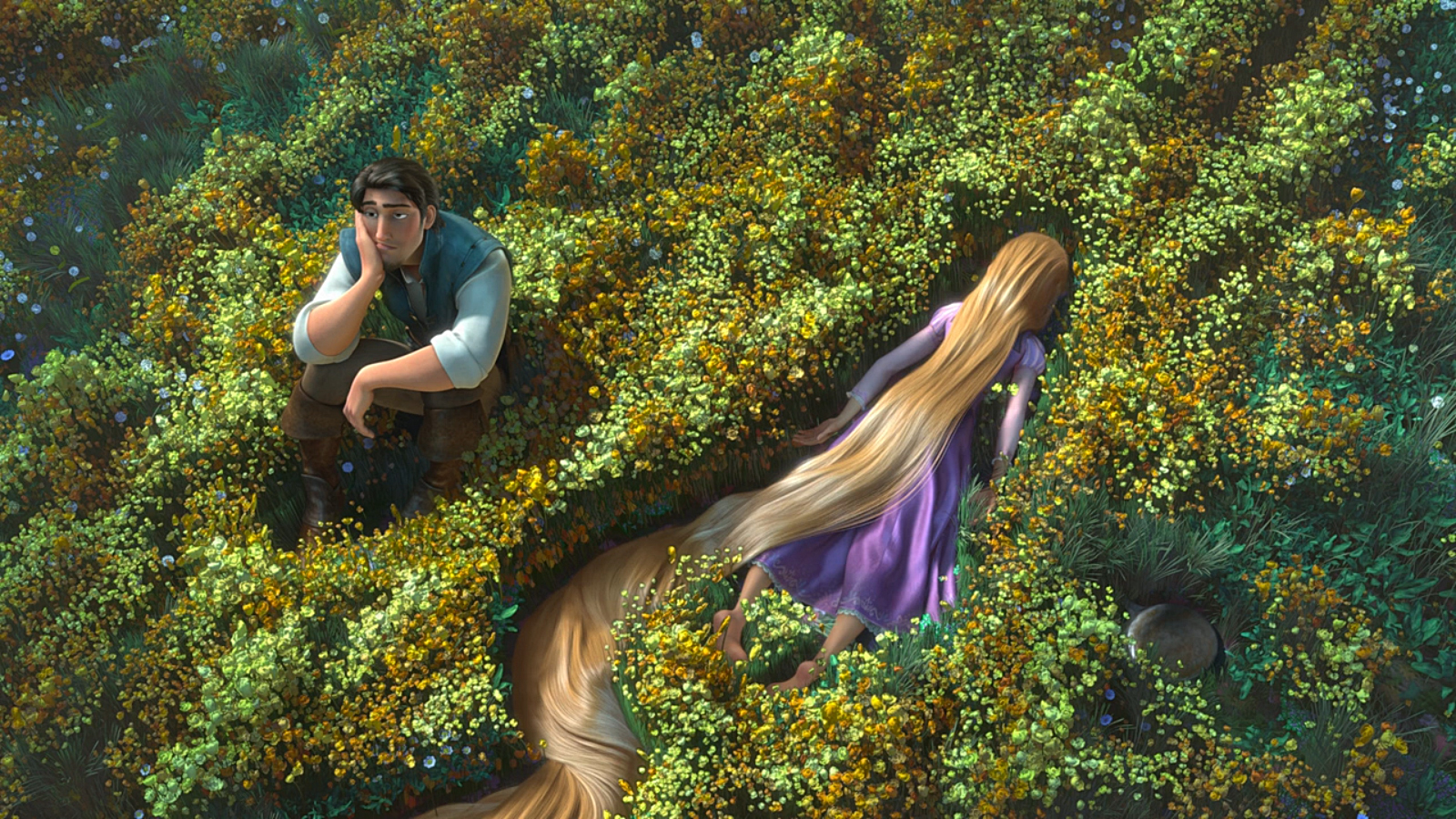 Tangled HD wallpapers   Desktop Wallpapers 1600x900