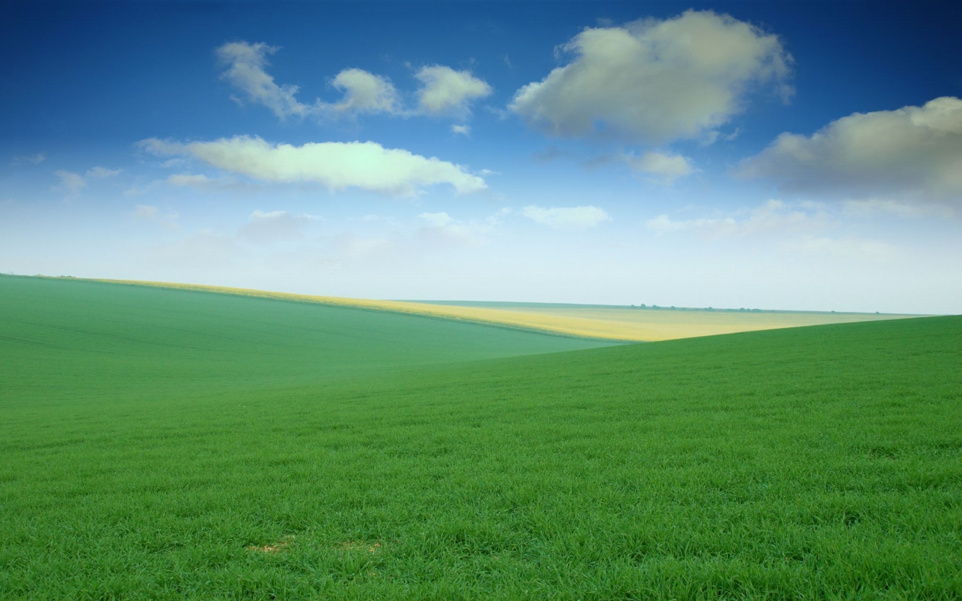 1920x1200 Green Field desktop PC and Mac wallpaper 1920x1200