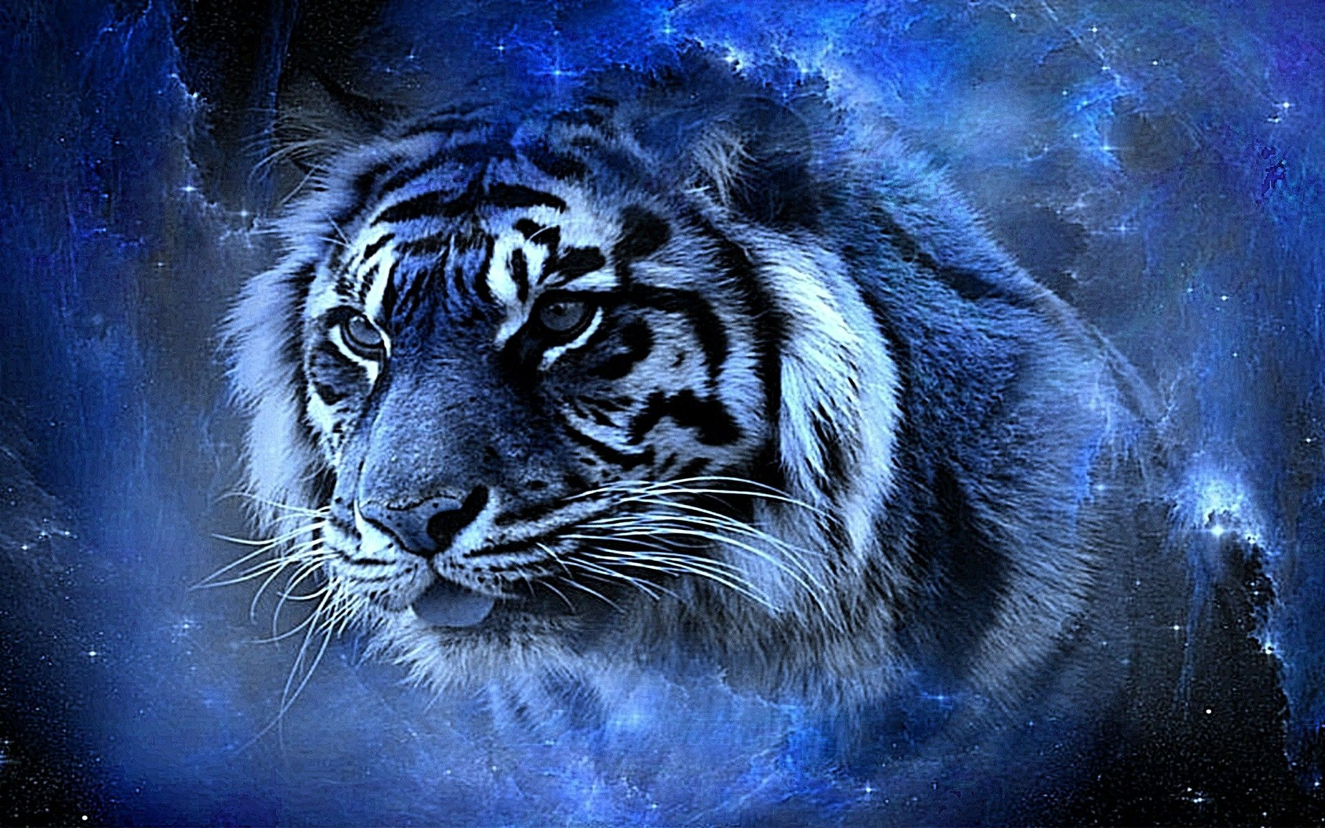 Tiger Wallpapers Download Group 19201200 Tiger Wallpapers 1920x1200