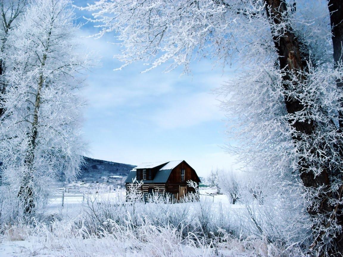 free winter winter winter winter winter 1152x864