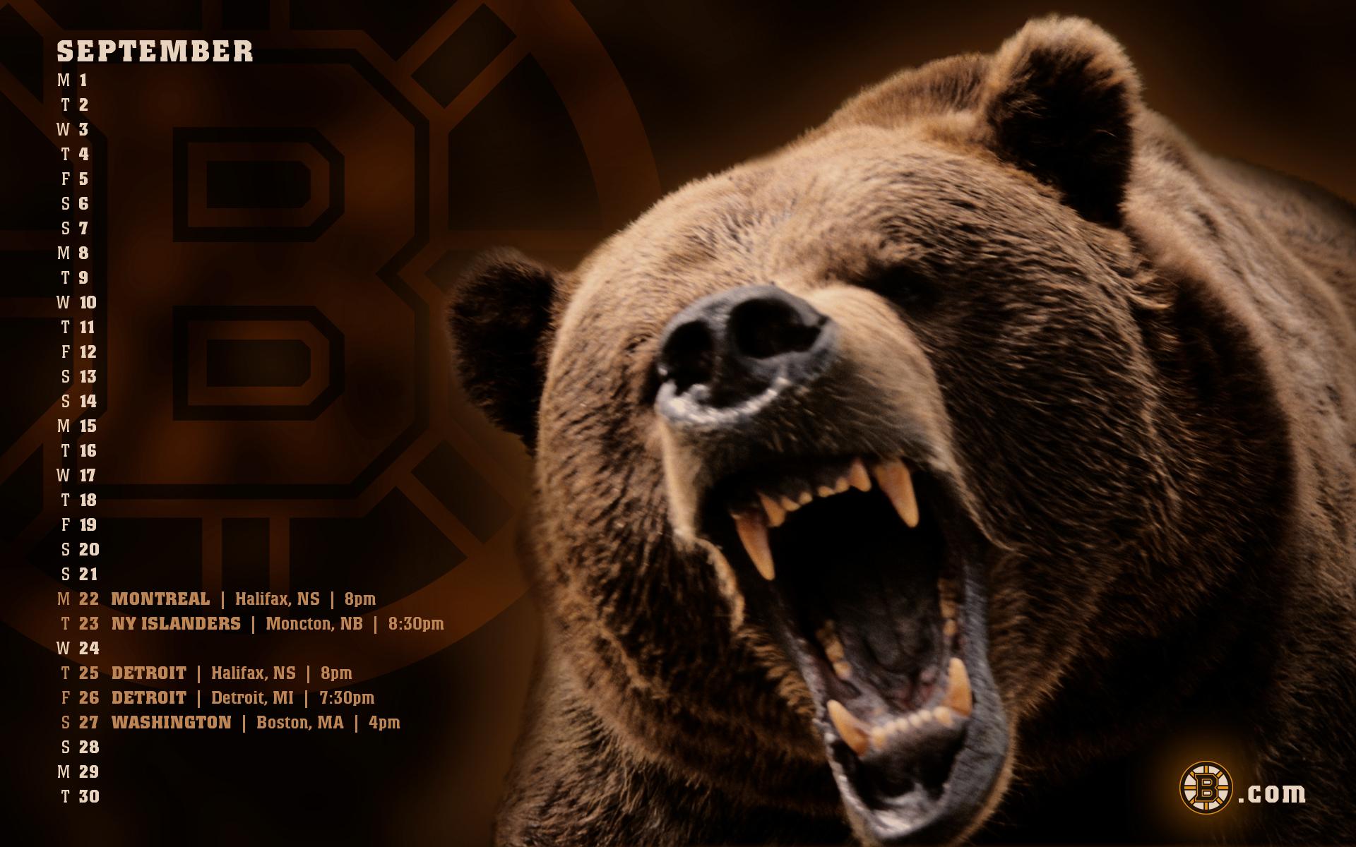 Grumpy Bear wallpaper   5533 1920x1200