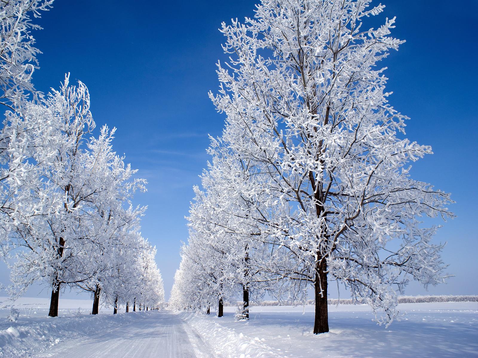 winter snow wallpaper 1600x1200