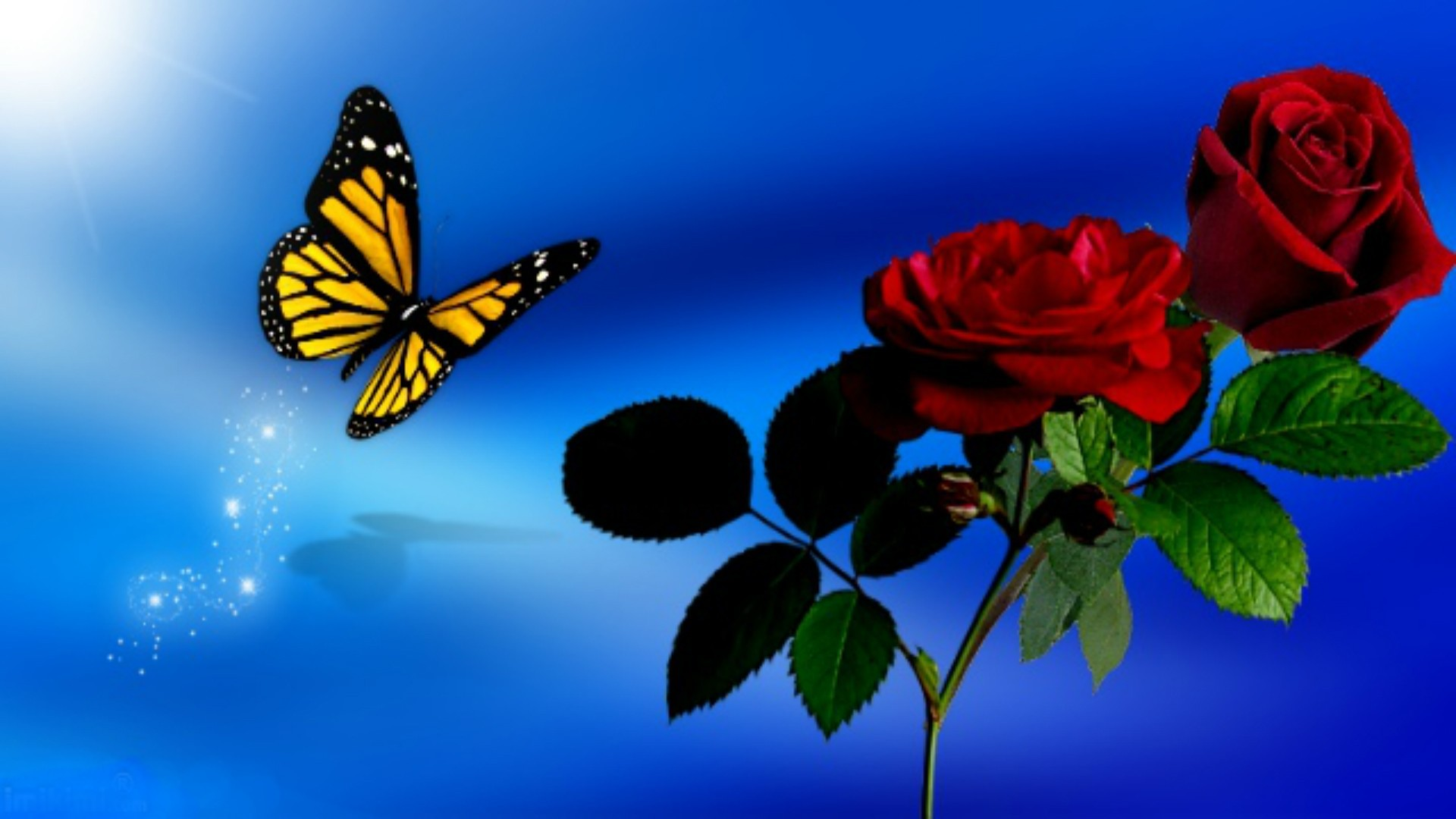 70 Red Butterfly Wallpapers on WallpaperPlay 1920x1080