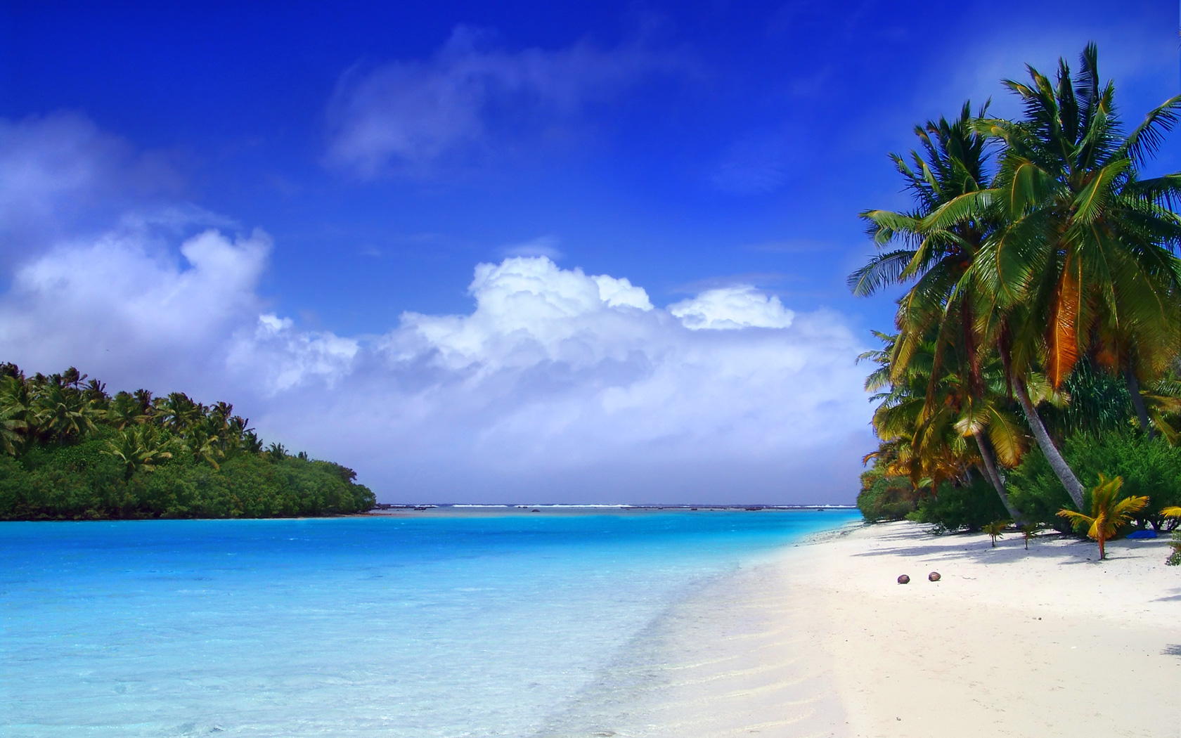 Backgrounds Beach wallpaper wallpaper hd background desktop 1680x1050