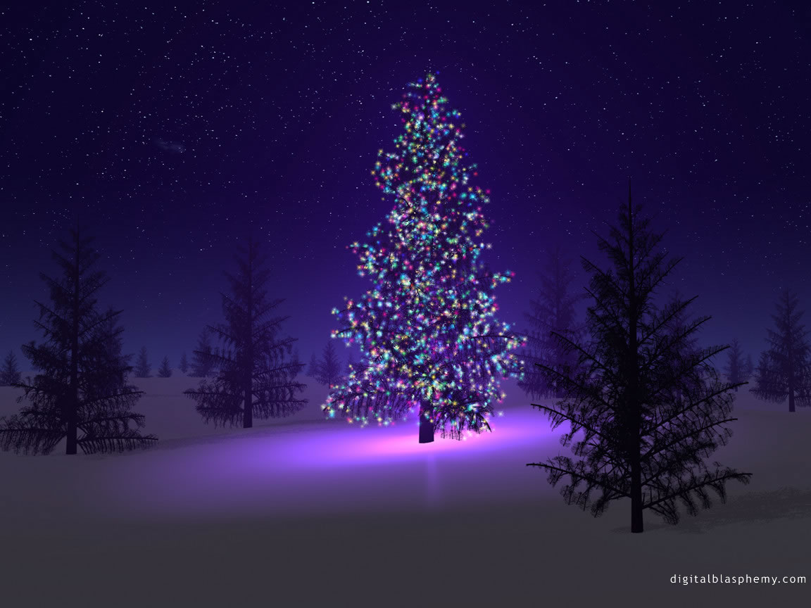 Wallpaper Backgrounds Beautiful Christmas Trees 1152x864