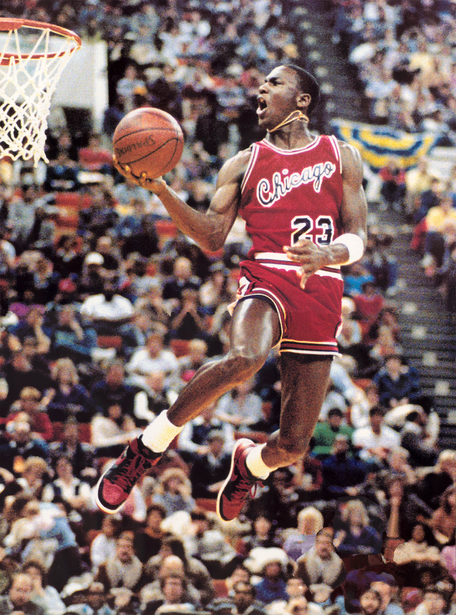 10 Interesting Facts Michael Jordan wallpaper Best NBA Dunks 1600x2155