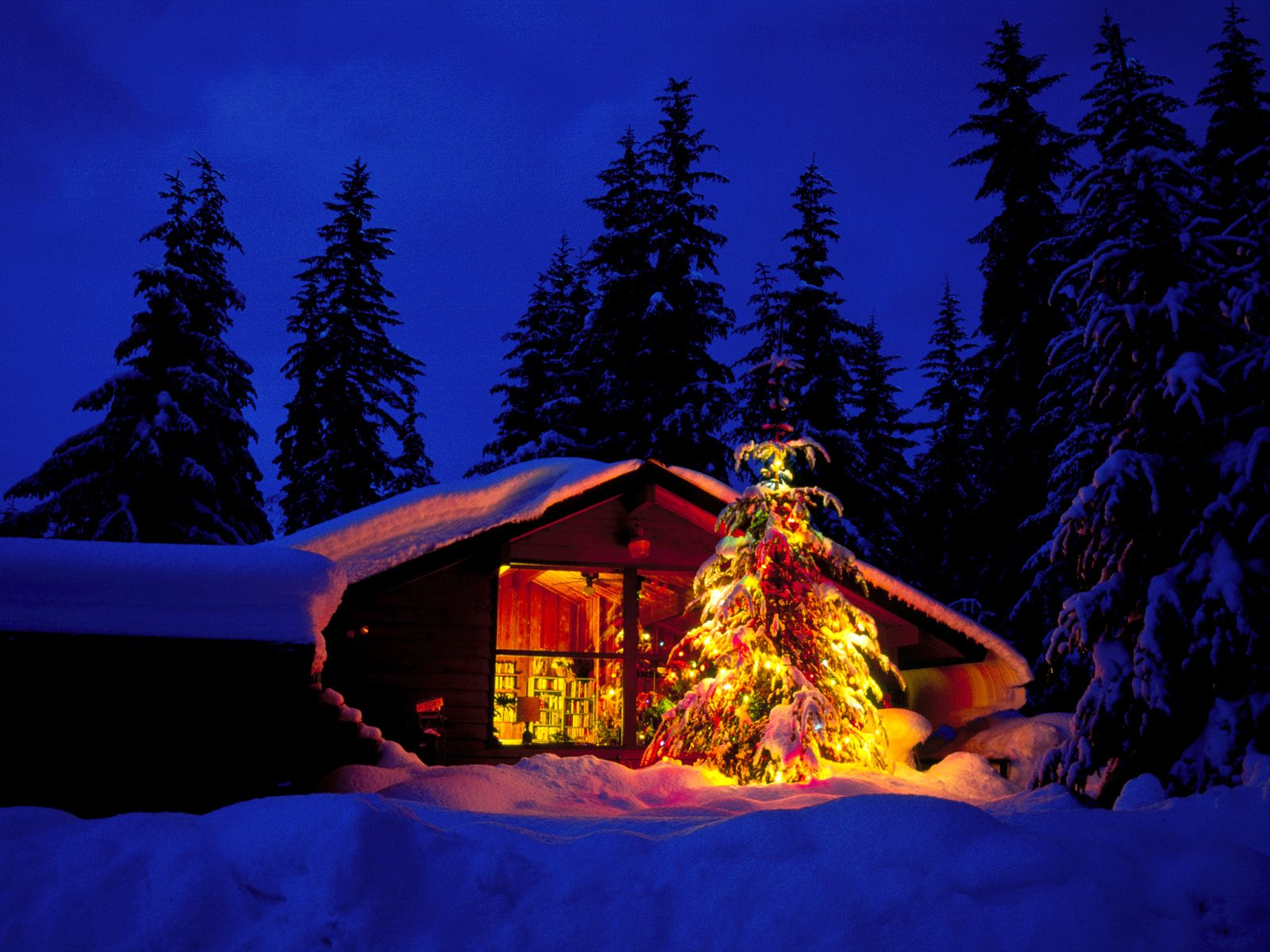Christmas Wallpaper 3D Wallpaper Nature Wallpaper 1600x1200