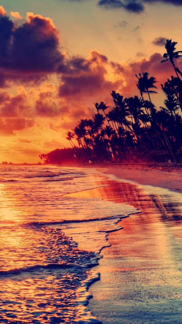 Sunset Beach iPhone 5s Wallpaper Download iPhone Wallpapers 640x1136