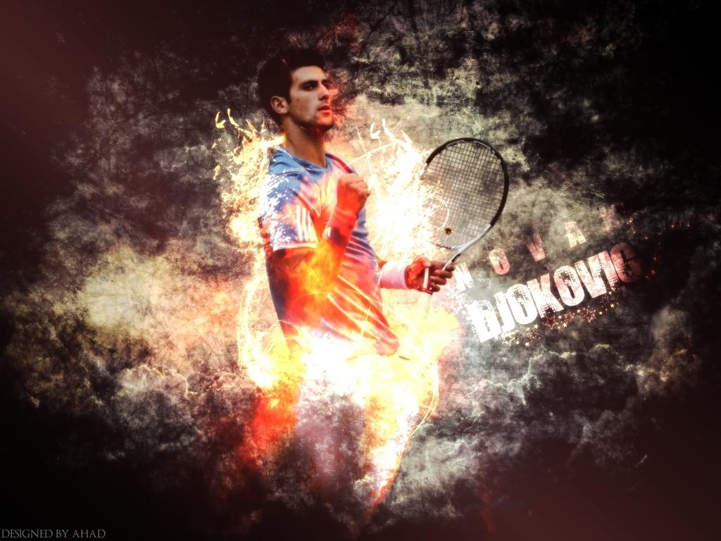 Sports Stars Marko Djokovic Wallpaper 1024x768