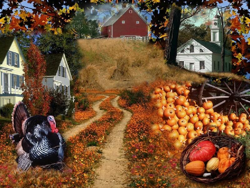 ... : http://www.wallpapersidol.com/free-thanksgiving-desktop-wallpapers
