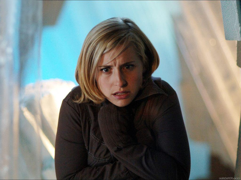 Allison Mack Wallpapers 1024x768