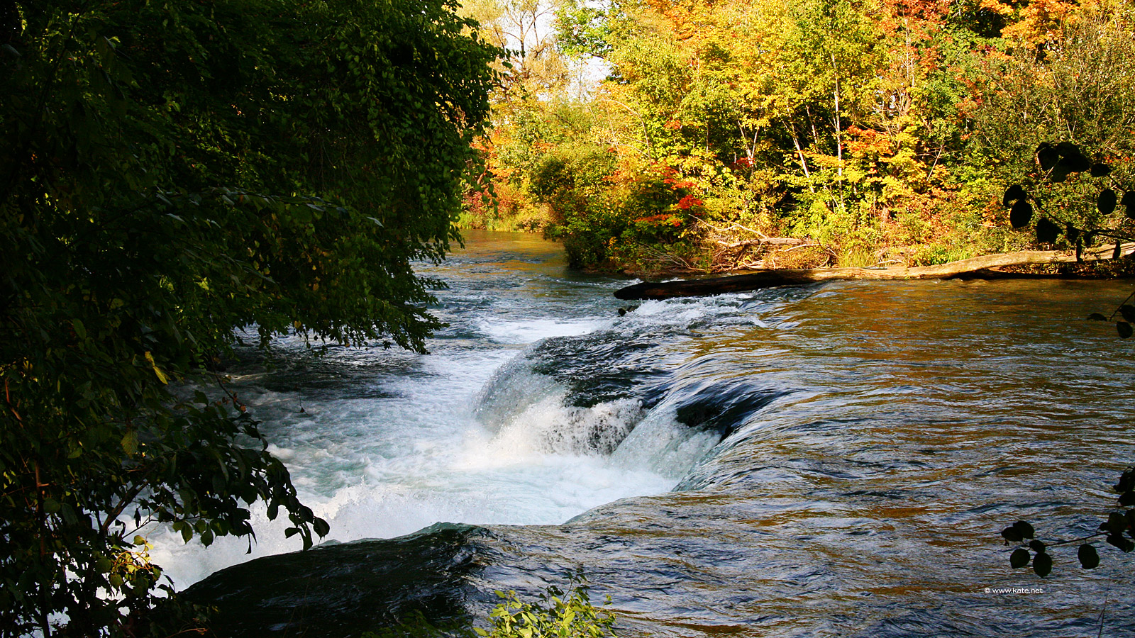 River in Autumn 1600x900