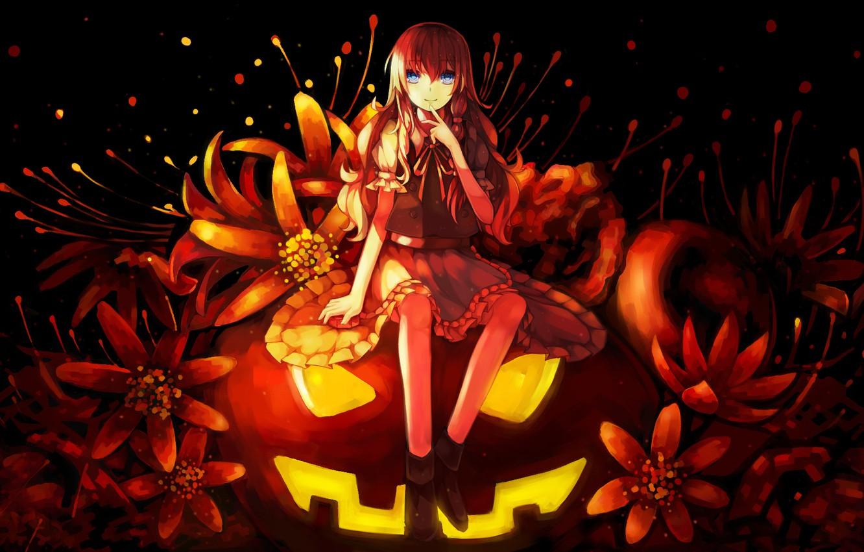 Wallpaper girl flowers holiday anime art pumpkin halloween 1332x850