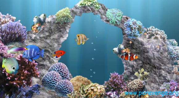 migliori sfondi animati per Android PC Revenge 580x320