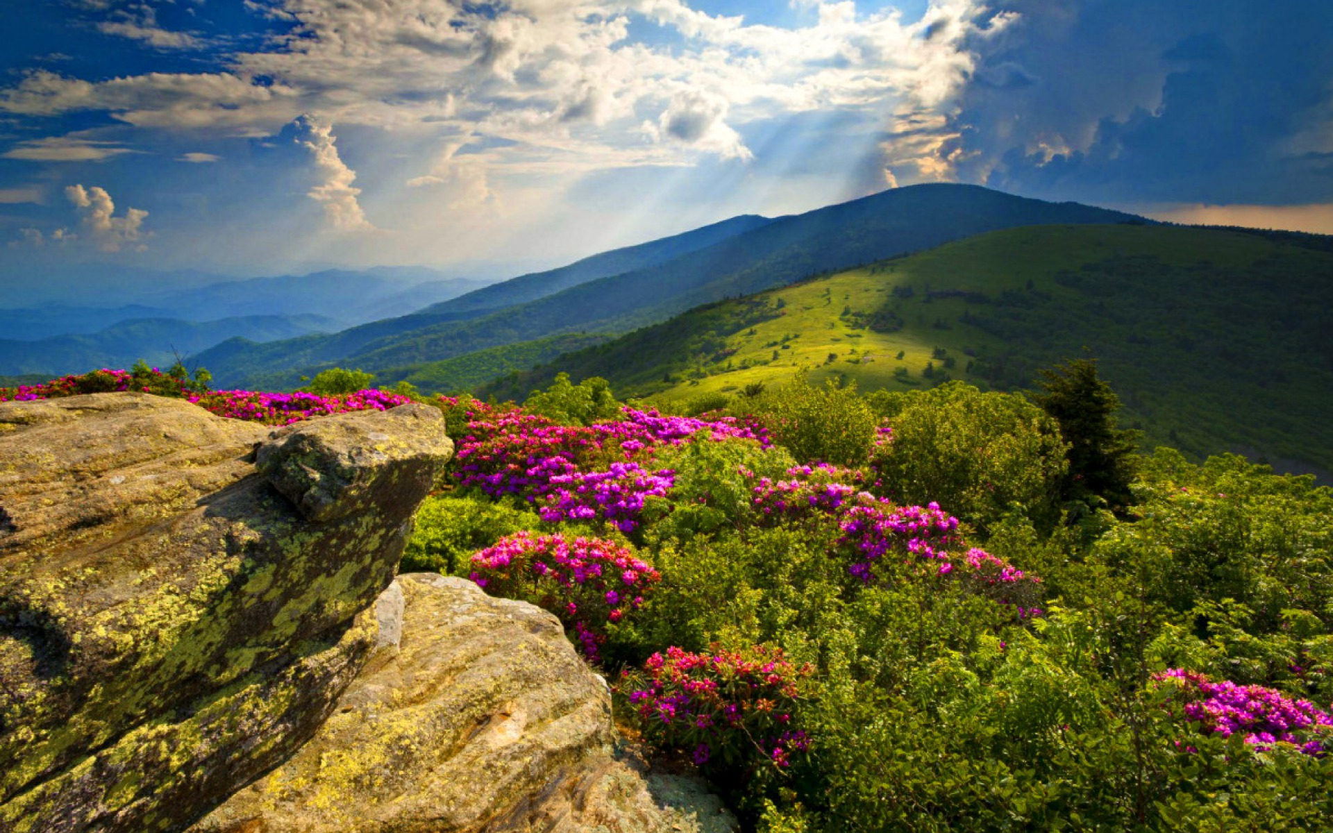 appalachian blue ridge mountains wallpaper - photo #32