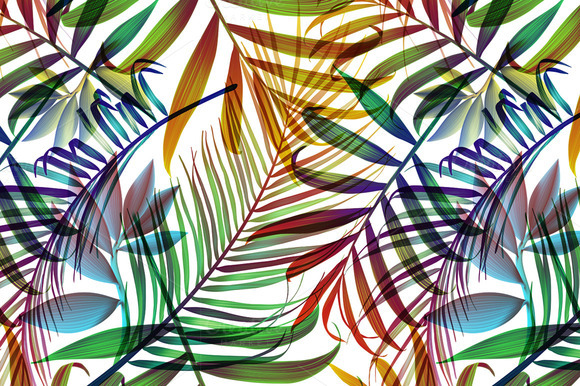 Tropical colorful palm jungle leaves Patterns on Creative Market 580x386