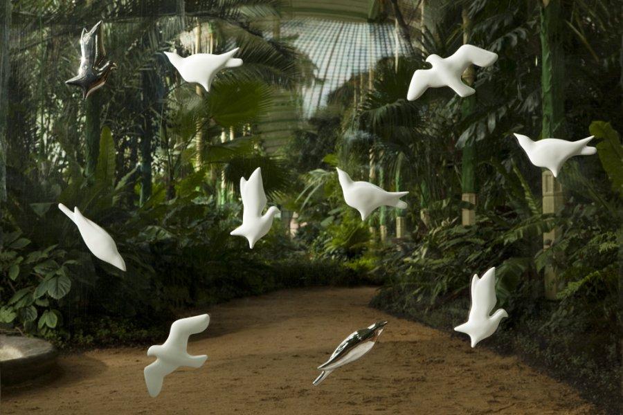 3D wallpaper BIRDS 900x600