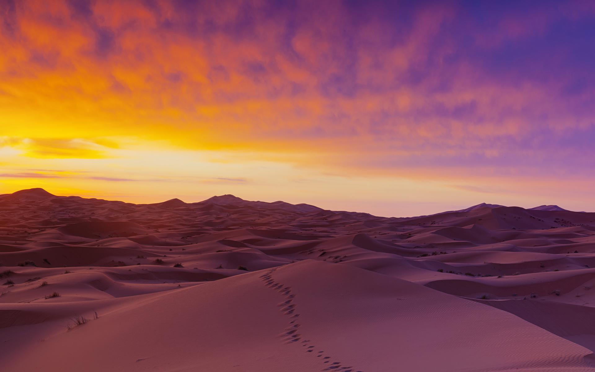 46+ Desert Wallpaper HD on WallpaperSafari