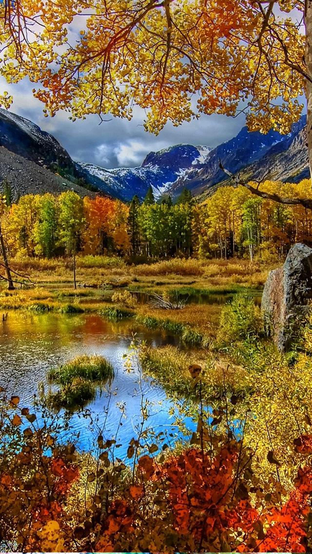 Nature Wallpaper For Apple iPhone 5 E Entertainment 640x1136