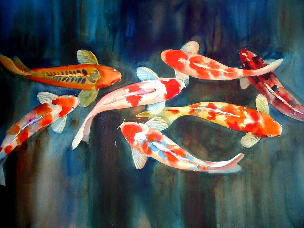 Trends For Wallpaper Ikan Koi Yin Yang Images