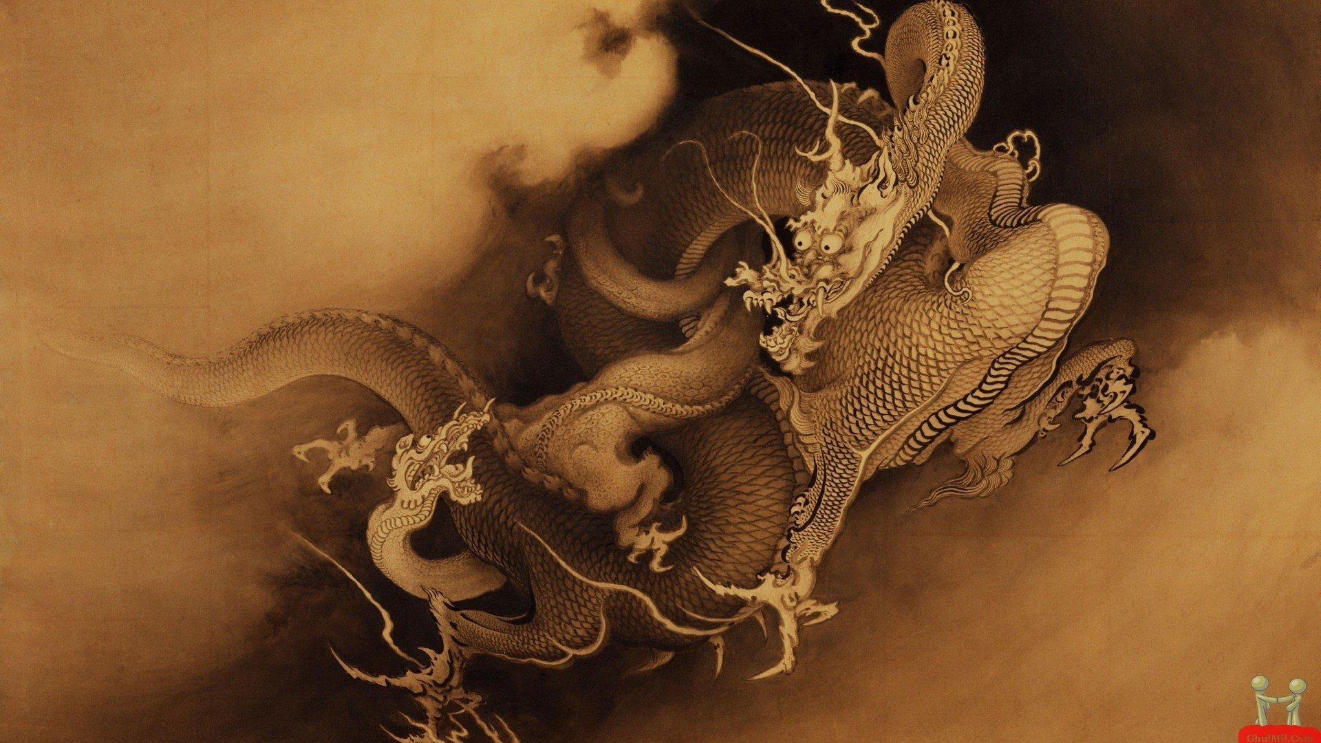 3D Dragon Fight HD Wallpaper For Desktop HD Wallpapers 1920x1080