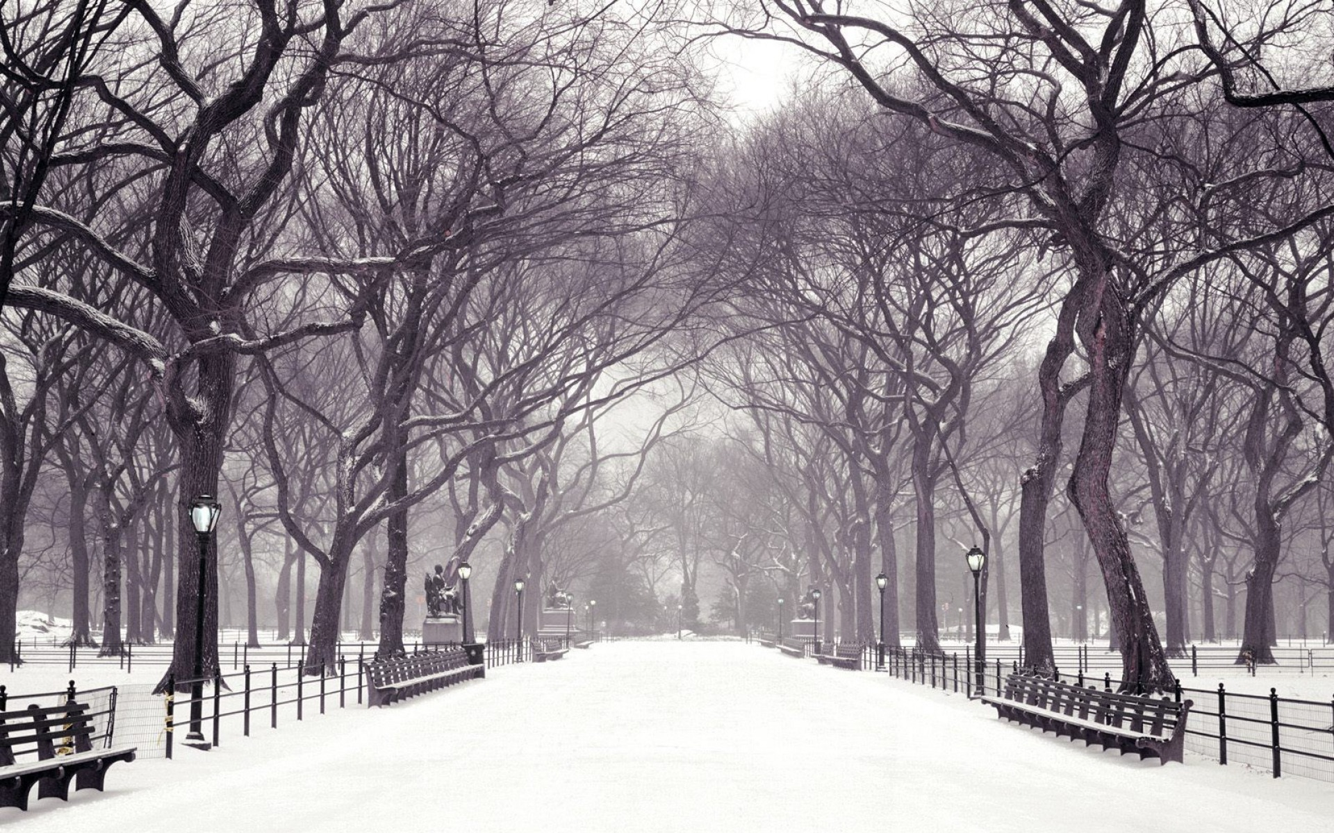 Central Park New York In The Winter desktop wallpaper WallpaperPixel 1920x1200