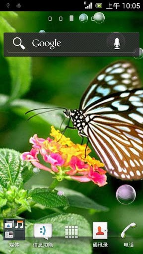 Download Butterfly Live Wallpaper for Android by L WallPaper 288x512