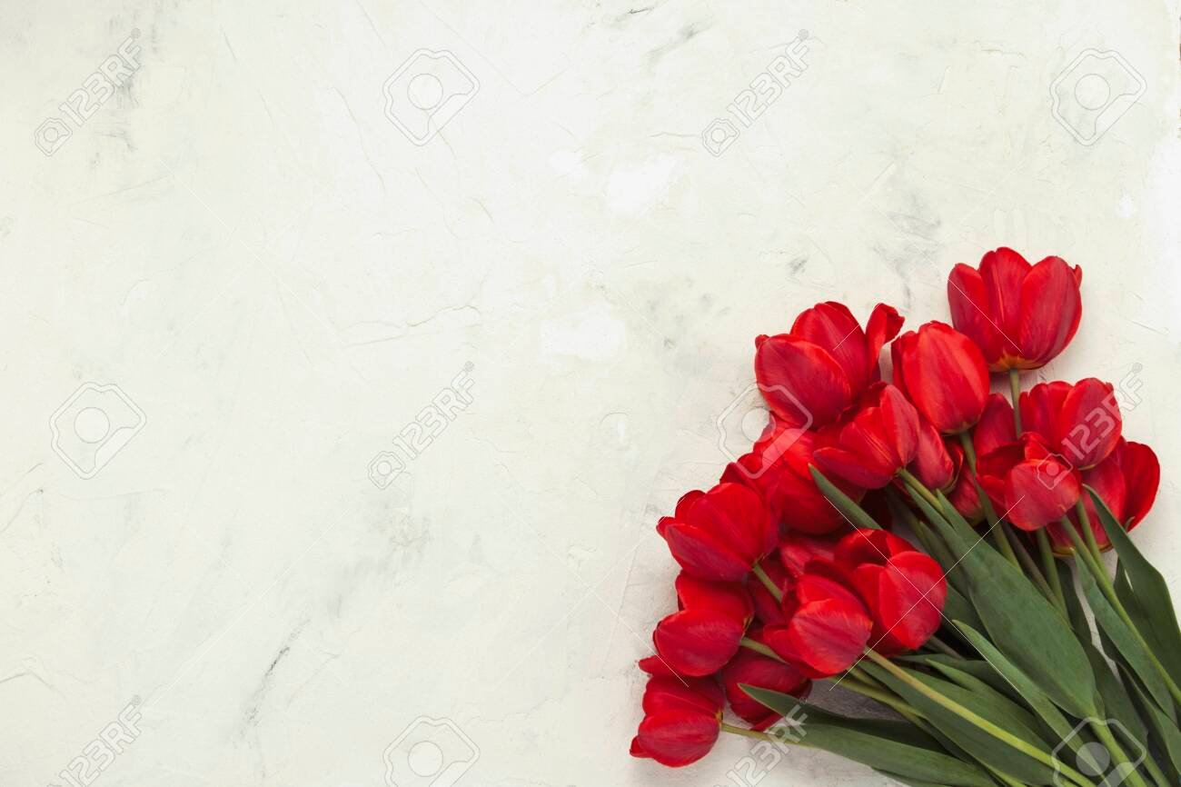 Red Tulips In The Lower Right Corner On A Light Stone Background 1300x866