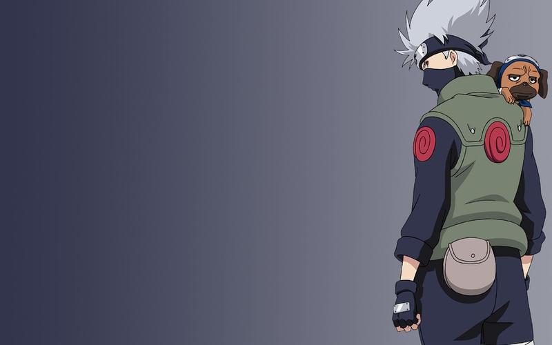 dog kakashi Kakashi Anime Naruto HD Wallpaper dog kakashi Kakashi 800x500