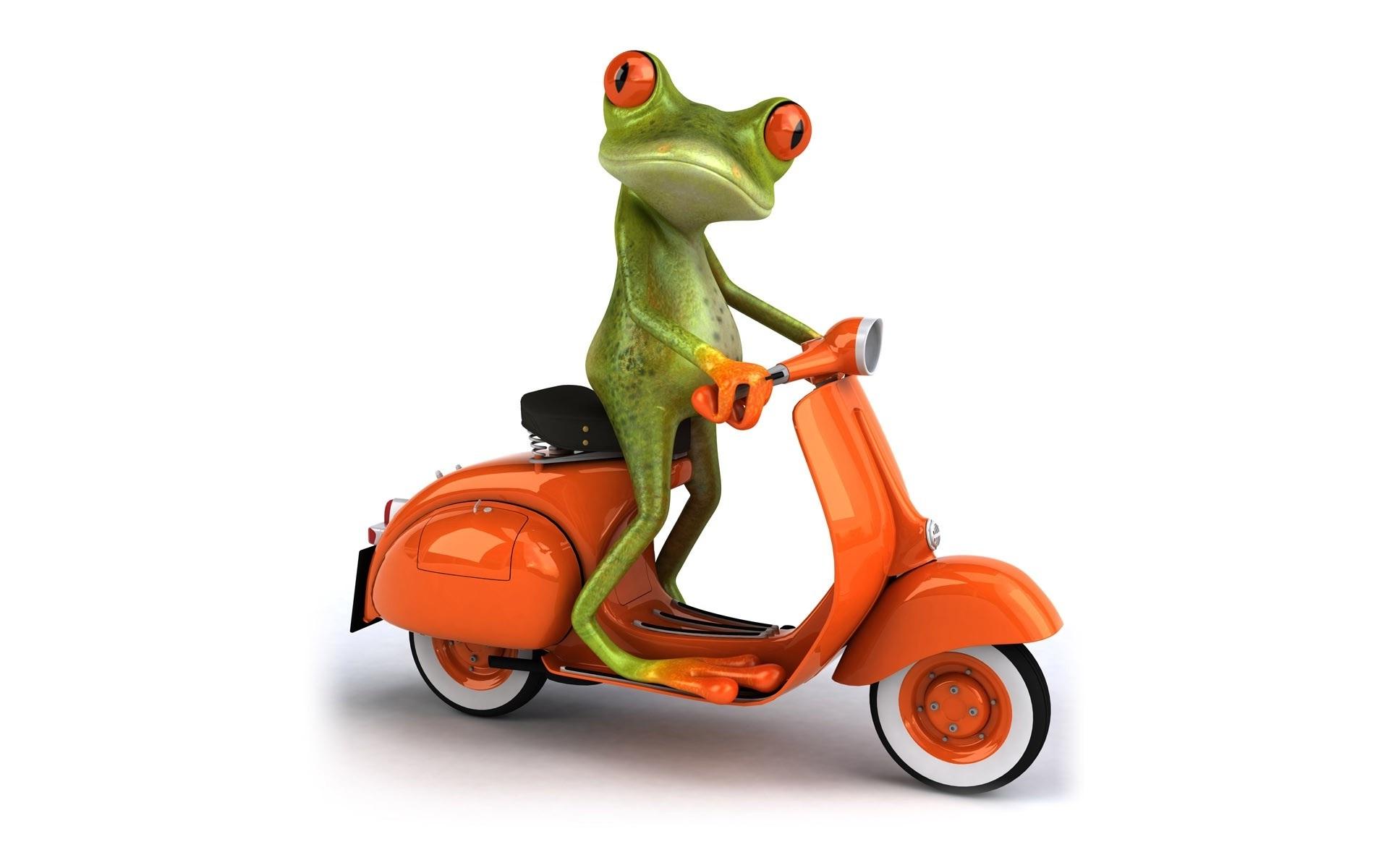 Cartoon Frog Wallpaper - WallpaperSafari