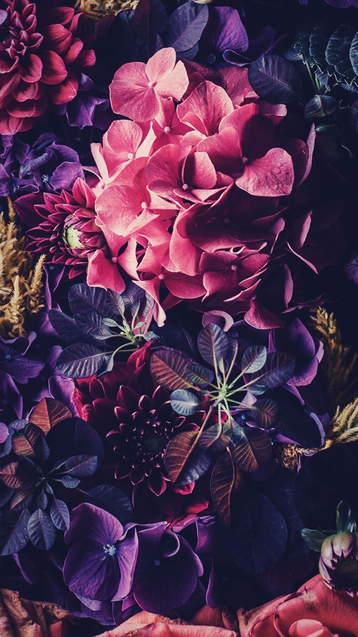 5 Floral iPhone Wallpapers To Celebrate 65k Pinterest Followers in 736x1308
