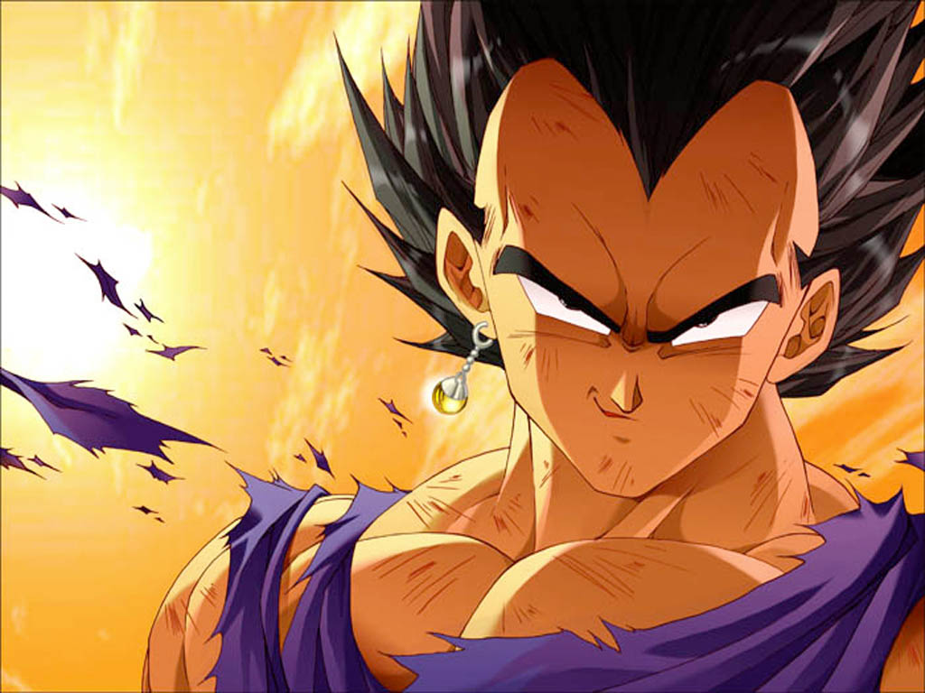 Dragon Ball Z Vegeta 1024x768