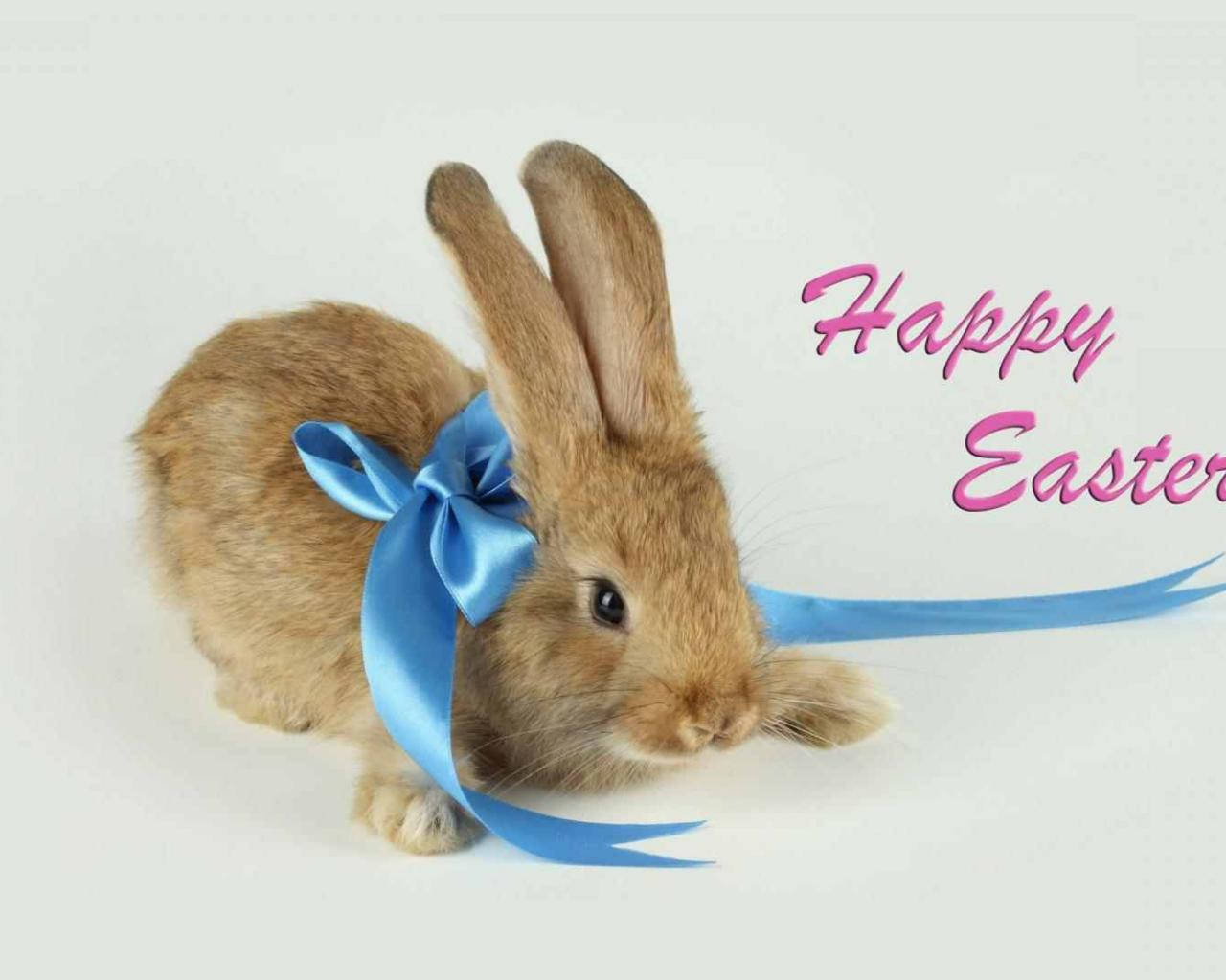 hd wallpaper happy easter bunny   Background Wallpapers 1280x1024
