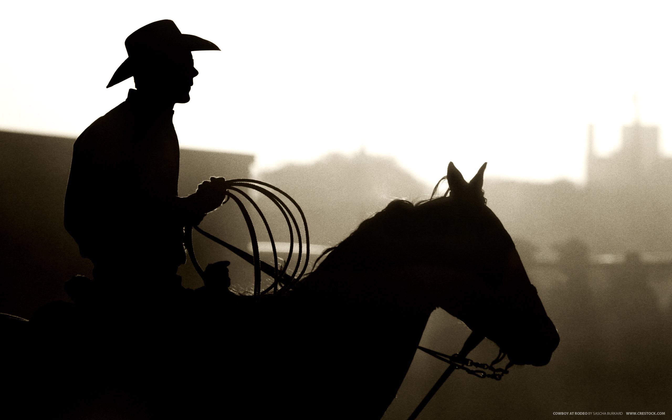 Cowboy at Rodeo 2560 x 1600 Download Close 2560x1600