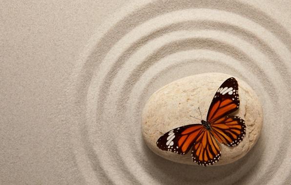 Wallpaper zen stone sand butterfly oriental butterfly sand 596x380