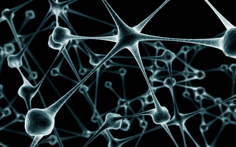 48] Cell Biology Wallpaper on WallpaperSafari 1440x900
