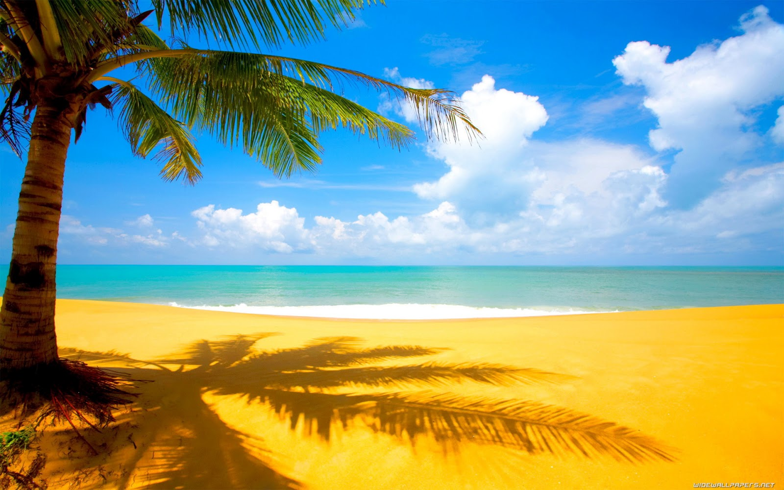 Beach View High Res Nature Backgrounds Wallpaper for Widescreen PC 1600x1000