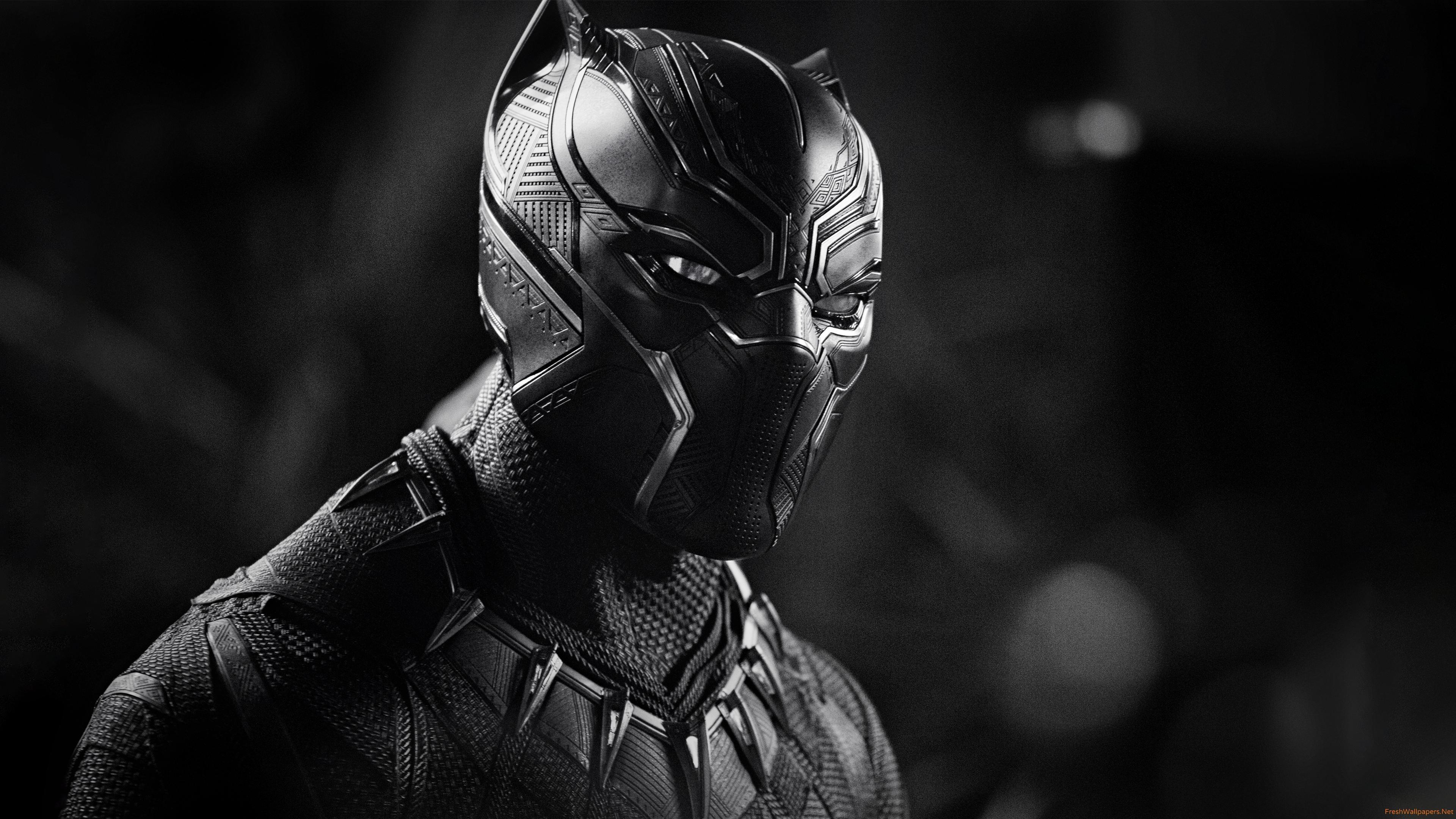 Black Panther 4K wallpapers Freshwallpapers 3840x2160