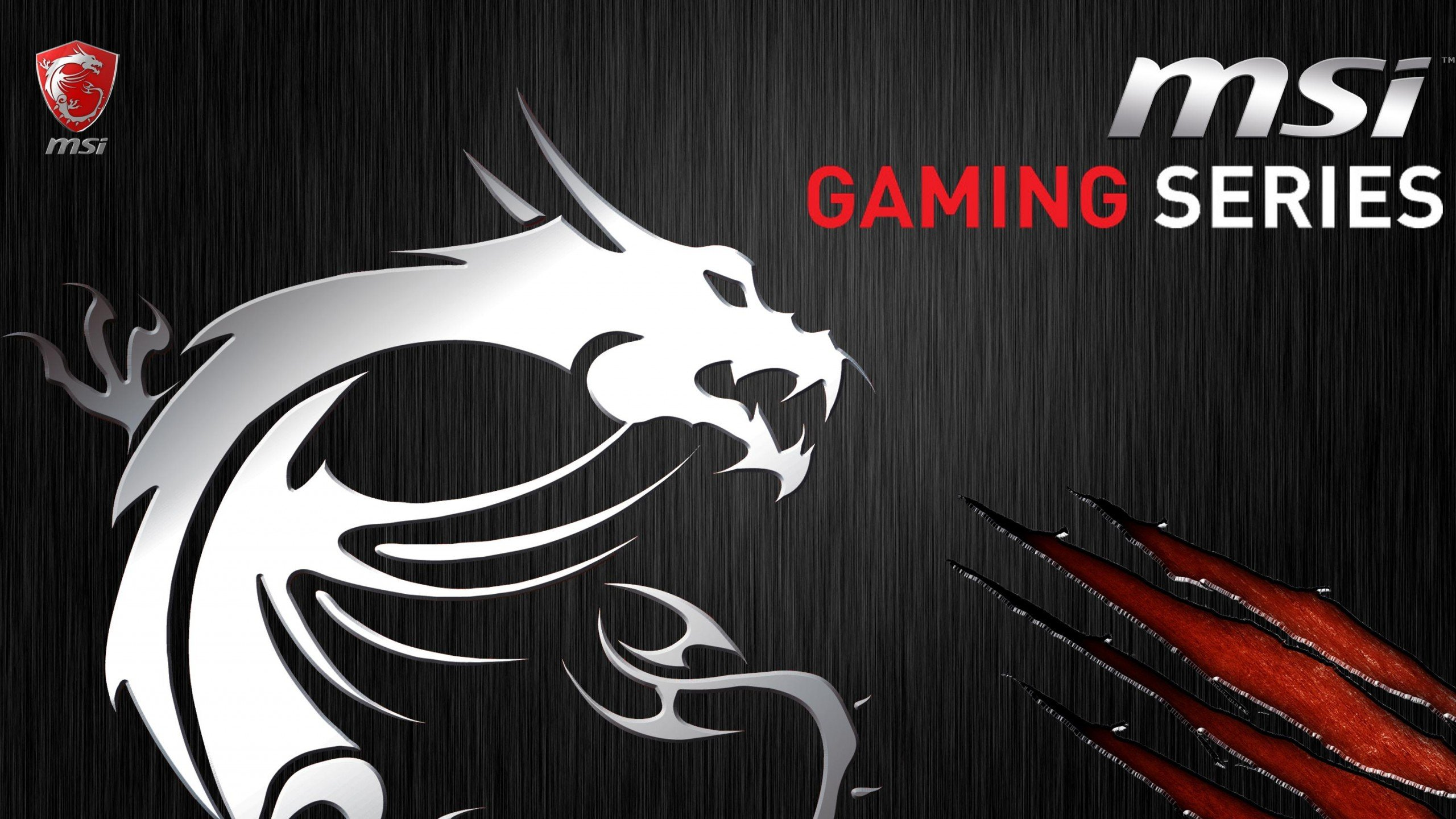 Msi gaming Wallpaper 2560x1440   Wallpaper   HD Desktops High 2560x1440