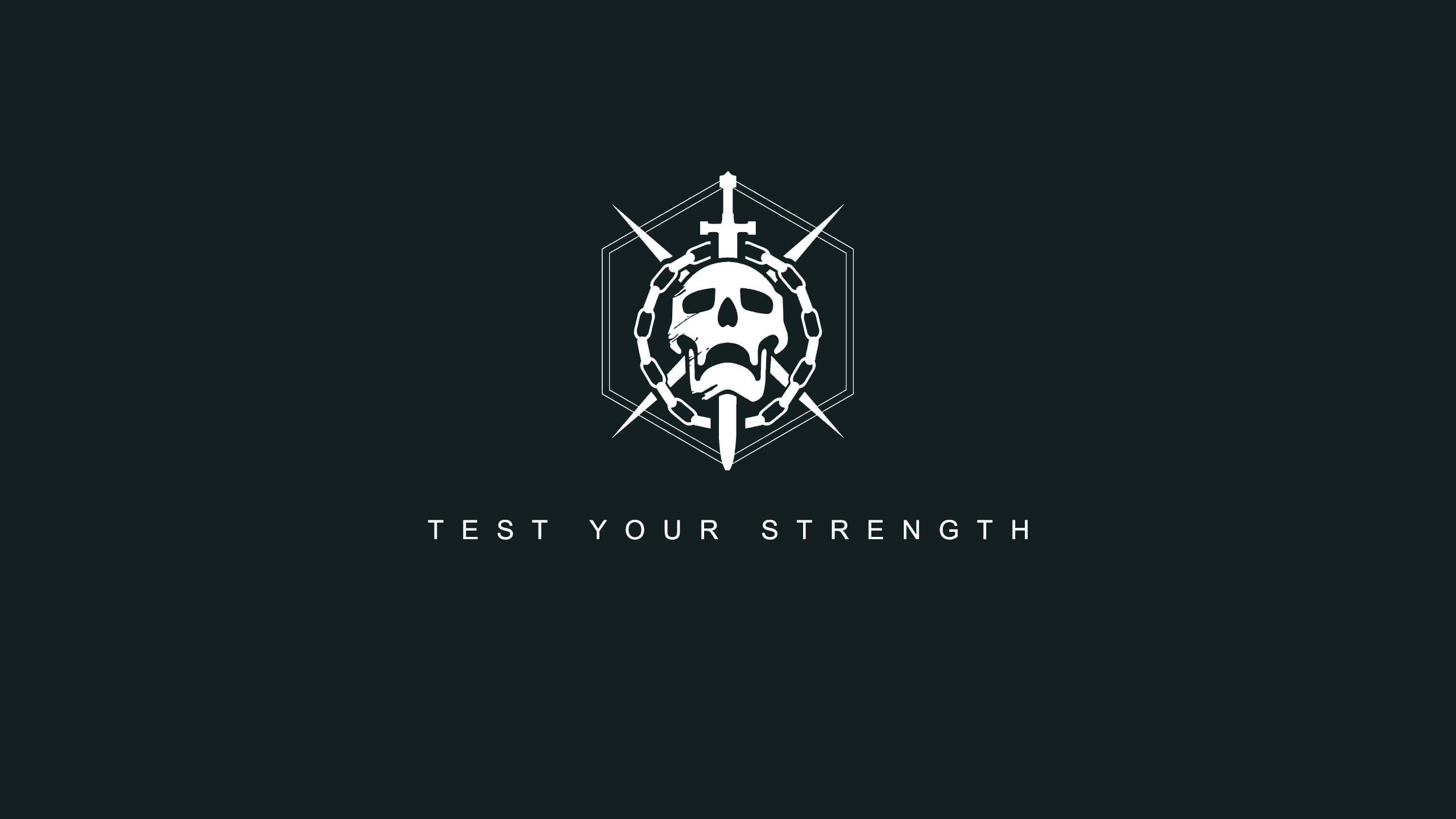 Test Your Strength skull wallpaper HD wallpaper Wallpaper Flare 2560x1440