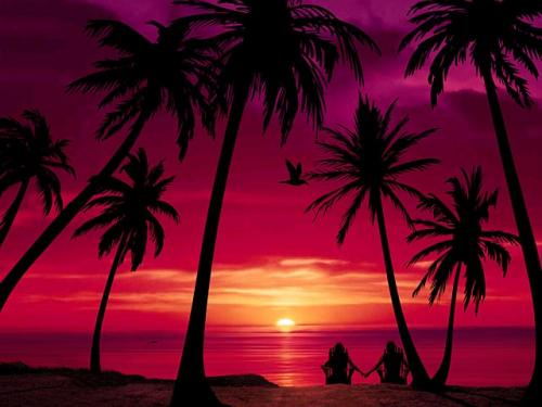 Beach Screensavers Screensavers   Download Beach 500x375