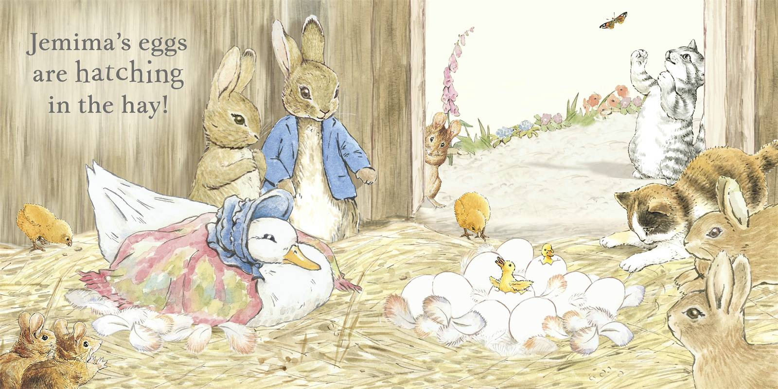 Peter rabbit wallpaper wallpapersafari for Beatrix potter mural wallpaper