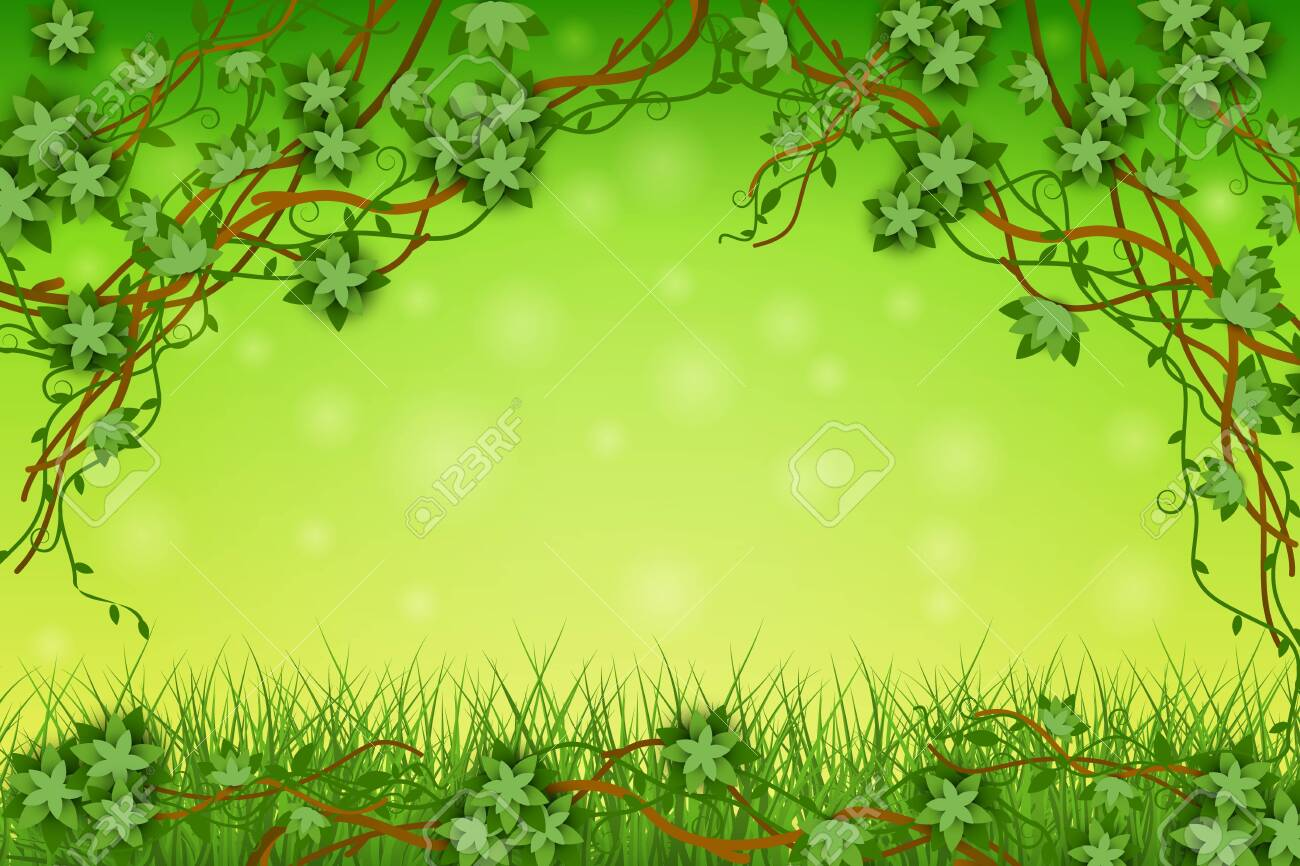 Green Background With Tropical Vines And Grass Exotic Plants 1300x866